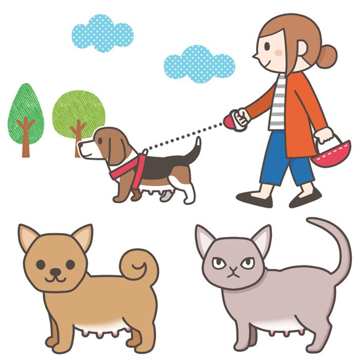 動物看護専門誌asイラスト